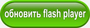 Обновить Adobe Flash Player